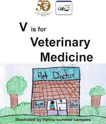 How to write a Veterinary Medicine personal statement   General tips    YouTube