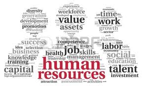 Samples Of My Work By Discipline  Human Resource Examples